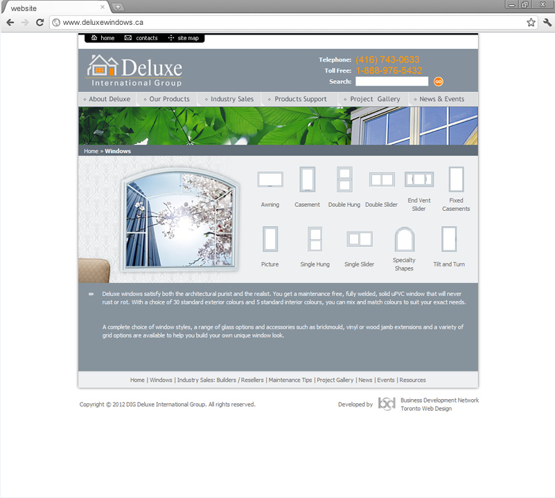 Windows page